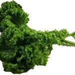 Wasabi Mustard- Leafy Greens