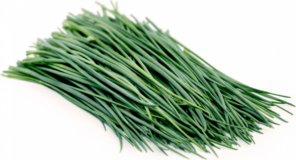 Pile of fresh green chives